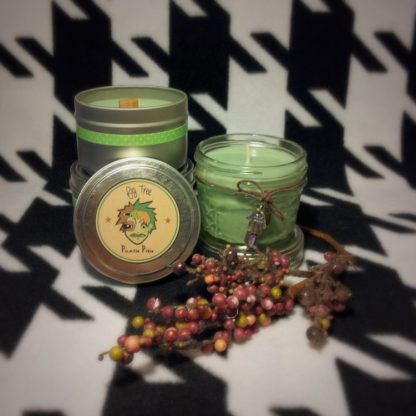 Fig Tree Scented Soy Candle - image IMG_5257-416x416 on https://www.picassopixie.com
