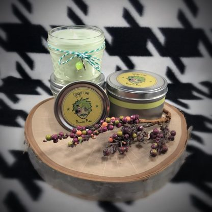 Ginger Lime Scented Soy Candle - image ginger-lime-soy-candle-416x416 on https://www.picassopixie.com